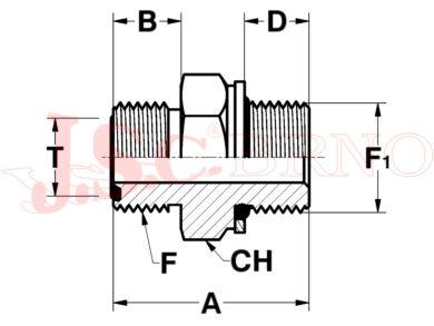 A502036-1222 (13/16-16ORFS - M22x1,5)